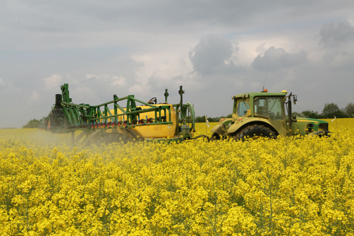 Tractor and sprayer over oilseed rape best practice to protect bees